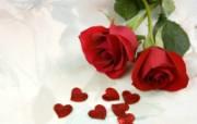 玫瑰写真 5 9 玫瑰写真 花卉壁纸