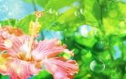 梦幻CG背景花卉 花卉壁纸