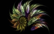 梦幻花朵 3 3 梦幻花朵 花卉壁纸