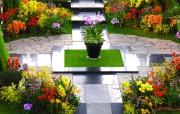 日本温室花卉展览馆 花卉壁纸
