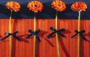 鲜花装饰 1 19 鲜花装饰 花卉壁纸