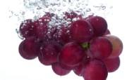 动感水果 1 13 动感水果 花卉壁纸