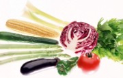 蔬菜写真 1 17 蔬菜写真 花卉壁纸
