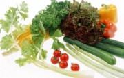 蔬菜写真 1 10 蔬菜写真 花卉壁纸