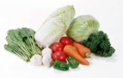 蔬菜写真 1 3 蔬菜写真 花卉壁纸