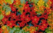 CG花卉插画壁纸 数码合成花卉插画 花卉壁纸