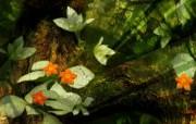 数码合成花卉壁纸 数码合成花卉插画 花卉壁纸