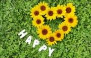 心形菊花 温馨花卉装饰图片 温馨布艺仿真花卉壁纸 花卉壁纸