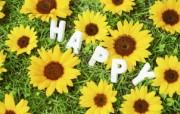 精美布艺仿真花图片 1920 1200 温馨布艺仿真花卉壁纸 花卉壁纸