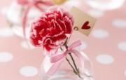 康乃馨 温馨布艺花卉装饰图片 温馨布艺仿真花卉壁纸 花卉壁纸