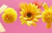室内装饰仿真花卉图片 1920 1200 温馨布艺仿真花卉壁纸 花卉壁纸