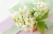 精致仿真花卉图片 1920 1200 温馨布艺仿真花卉壁纸 花卉壁纸