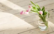 温馨家居插花艺术 花卉壁纸