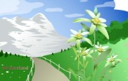 国家与鲜花 1 18 国家与鲜花 花卉壁纸