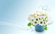 宽屏合成花卉 1 14 宽屏合成花卉 花卉壁纸