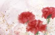 母亲节康乃馨 1 20 母亲节康乃馨 花卉壁纸