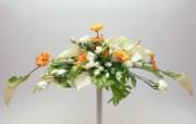鲜花装饰 10 15 鲜花装饰 花卉壁纸