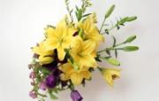 鲜花装饰 10 13 鲜花装饰 花卉壁纸