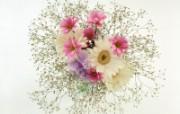 鲜花装饰 10 11 鲜花装饰 花卉壁纸