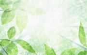 绿叶合成 1 18 绿叶合成 花卉壁纸