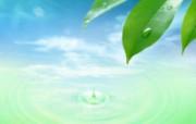 绿叶合成 1 2 绿叶合成 花卉壁纸