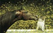 触动心灵的动物绘画 Lesley Harrison 手绘动物作品集 Lesley Harrison 手绘插画 Dubious Friends桌面壁纸 触动心灵的动物绘画Lesley Harrison 手绘动物作品集 绘画壁纸