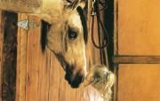 触动心灵的动物绘画 Lesley Harrison 手绘动物作品集 Lesley Harrison 手绘插画 Little Visitor桌面壁纸 触动心灵的动物绘画Lesley Harrison 手绘动物作品集 绘画壁纸
