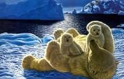 动物星球 绘画壁纸