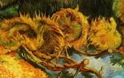 梵高 印象画派 作品宽屏壁纸 壁纸3 梵高(印象画派)作品 绘画壁纸