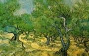 梵高 印象画派 作品宽屏壁纸 壁纸5 梵高(印象画派)作品 绘画壁纸