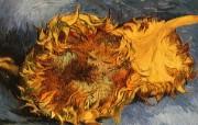 梵高 印象画派 作品宽屏壁纸 壁纸22 梵高(印象画派)作品 绘画壁纸