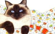 富贵猫绘画壁纸 Mortimer Anne绘画作品 绘画壁纸