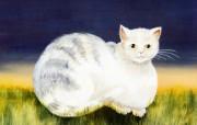绘画动物趣味猫咪二kriebel 绘画作品制作 绘画壁纸