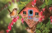 鸟语花香Grende Janene艳丽小鸟绘画壁纸 绘画壁纸