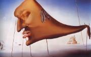 Salvador Dali 萨尔瓦多达利作品集 绘画壁纸