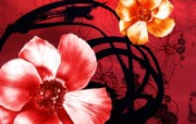 水墨花卉 壁纸2 水墨花卉 绘画壁纸