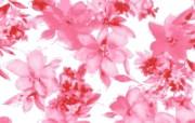 水墨花卉 壁纸3 水墨花卉 绘画壁纸