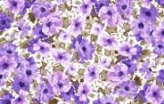水墨花卉 壁纸12 水墨花卉 绘画壁纸