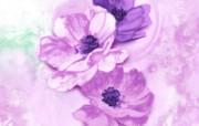 水墨花卉 壁纸13 水墨花卉 绘画壁纸