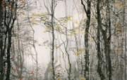 茑温泉的自然林 日本 异国风光山水画 异国风光刘懋善山水画壁纸 绘画壁纸