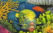 照片级的手绘插画壁纸 澳洲地理杂志06 07年手绘封面月历 Kevin Stead手绘插画 Spotted Boxfish 米点箱�桌面壁纸 照片级的手绘插画壁纸澳洲地理杂志0607年手绘封面月历 绘画壁纸