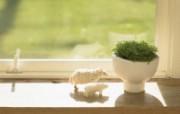 高精度室内盆栽摆设 壁纸19 高精度室内盆栽摆设 建筑壁纸