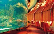 迪拜酒店 建筑壁纸