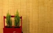 韩式家居 三 壁纸6 韩式家居三 建筑壁纸
