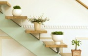 室内绿色摆设壁纸2 宽屏 1600 1200 壁纸21 室内绿色摆设壁纸2( 建筑壁纸