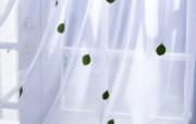 室内绿色摆设壁纸 宽屏 1600 1200 壁纸14 室内绿色摆设壁纸(宽 建筑壁纸