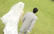 新婚专用 婚礼婚戒鲜花温馨壁纸 壁纸25 新婚专用:婚礼婚戒鲜 建筑壁纸