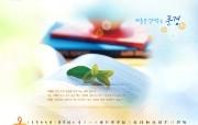 2008年9月韩风月历壁纸 节日壁纸
