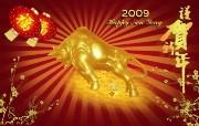2009牛年春节壁纸 2009牛年春节壁纸 节日壁纸
