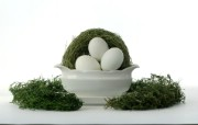 白色复活蛋 复活节装饰壁纸 复活节壁纸 彩蛋与装饰 节日壁纸